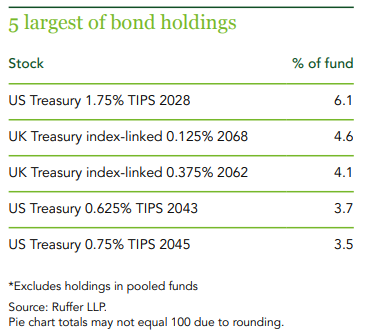 ruffer investment company bond holdings sharepad